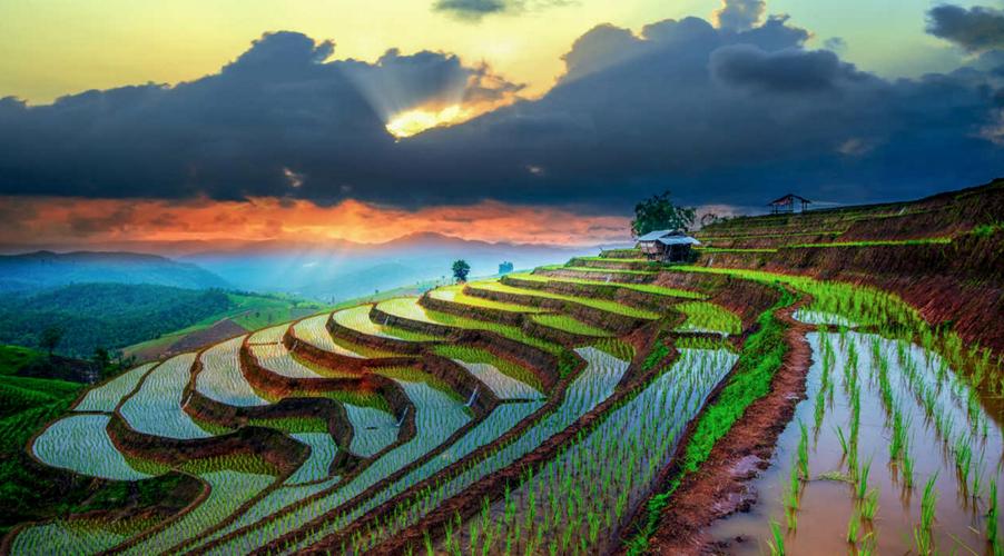 Таиланд против Вьетнама: что и в какой месяц лучше выбирать