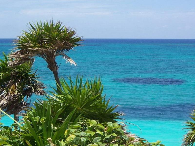 Купальный сезон: лучшая температура для купания в море