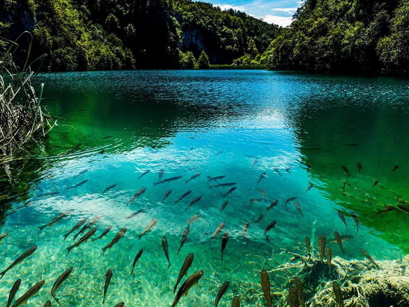 В самом расцвете: топ-10 самых красивых цветных озер