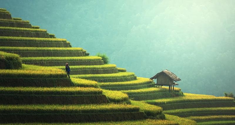 Бали. Pixabay