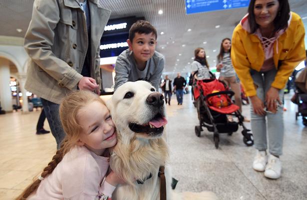 Москвичам дадут обнять собак перед полетом