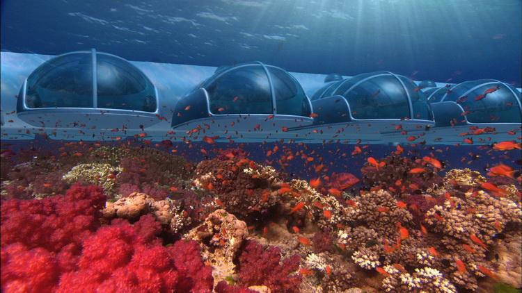 Подводные гостиницы: необычные отели с видом на морских обитателей